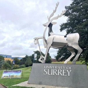 Университет Суррея (University of Surrey) - Образование в Англии